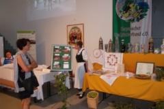 Ausstellung 3